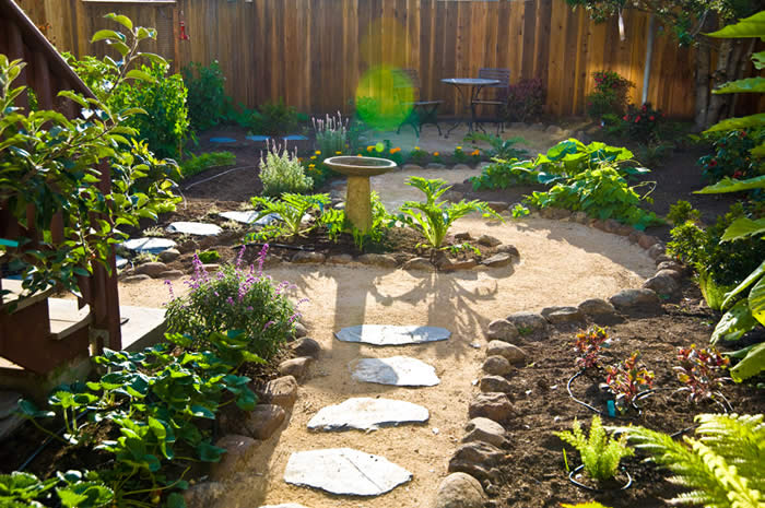 Tips on greener garden designs that are pet friendly for Fun vegetable garden ideas