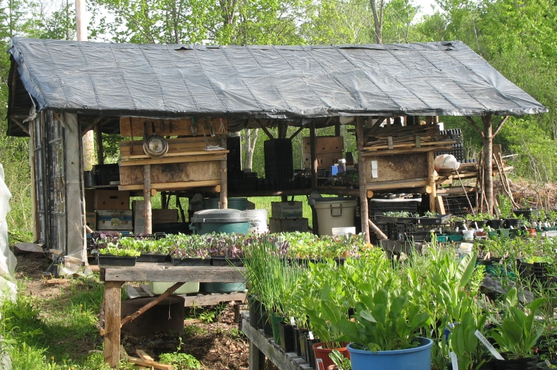 Shed Design Tips For Your Potting Cool Deisgn