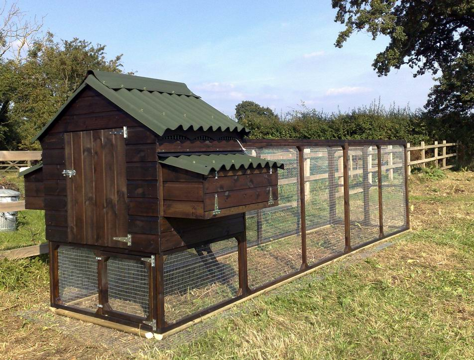 how to build a chicken coop design your own or use ready